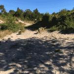 Hundeskoven ved Tverstedsøerne (Bindslev)