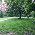 Ågadeparken fritløbsområde