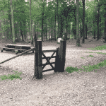 Sdr. Plantage Hundeskov (Varde hundeskov)