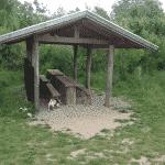Bærmoseskov hundeskov ved Trige