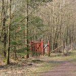 Engelsholm hundeskov (3)