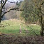 Engelsholm hundeskov (7)