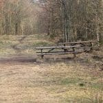 Engelsholm hundeskov (8)