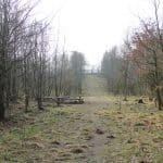 Engelsholm hundeskov (9)