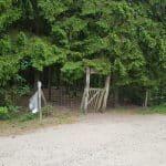 Palmelunden, Gludsted Plantage hundeskov ved Hampen